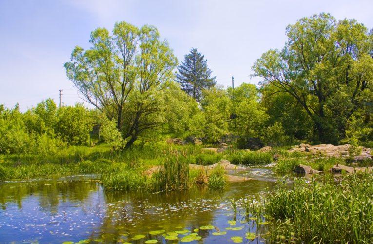 Уникальные Голубые озера Днепропетровщины оказались на грани исчезновения