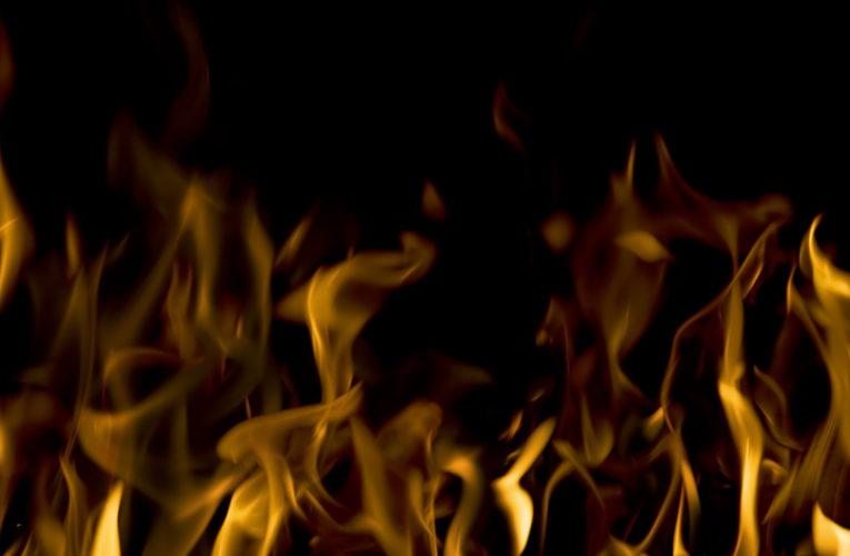На окраине Днепра пожар охватил огромную площадь садов