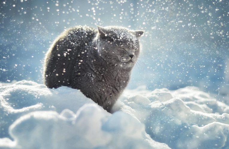 В Днепре ожидается сильное похолодание