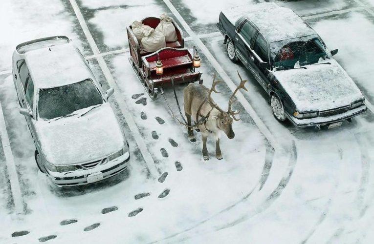 Днепр: общественный транспорт готовят к работе в сильные морозы